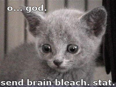 kitty brain bleach
