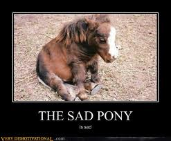 I'm hanging with the pony.