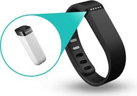 A better picture of Fitbit.  See its diabolical brain highlighted.