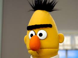 Bert from Sesame Street!