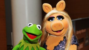 Kermit: Someone help me she watches me sleeep (photo stolen from Huffpo)